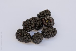 blackberries-391258_1280